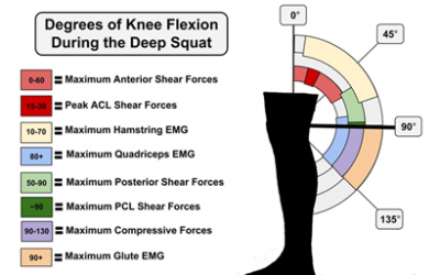 Warm-Ups for Runners, Squat Depth, Ankle / Foot Care & more – Health & Fitness Round Up